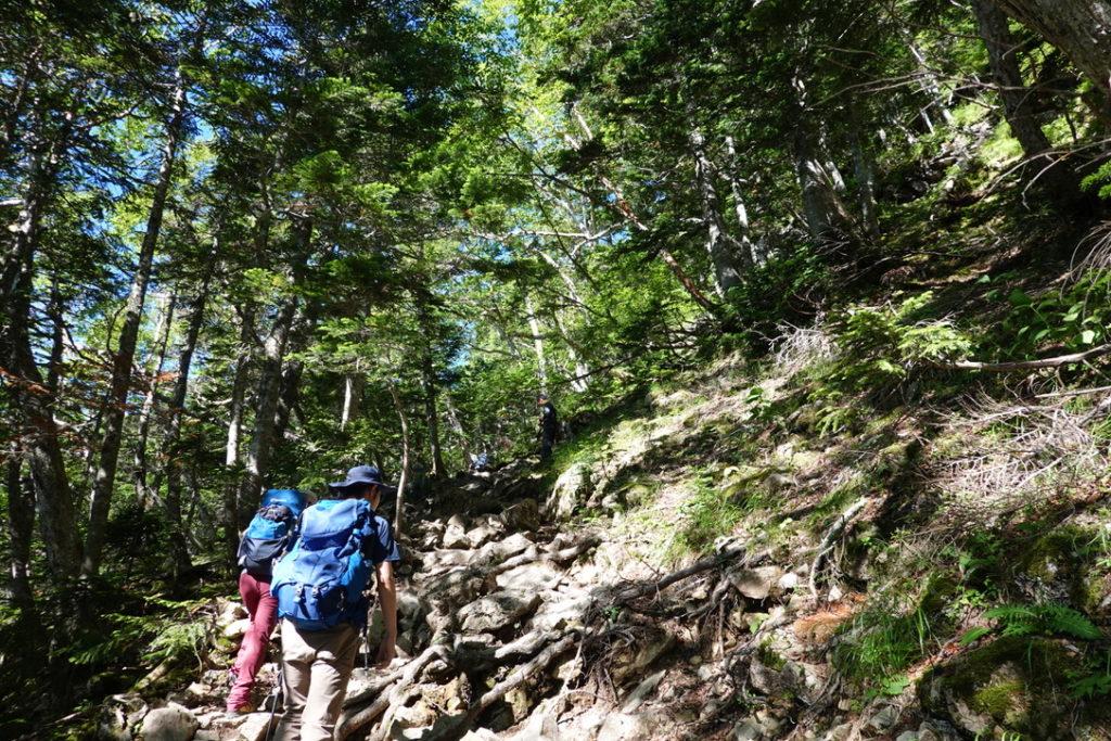 仙丈ヶ岳・四合目をすこし行くと、岩が多くなってきた