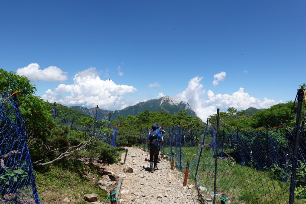 仙丈ヶ岳・カラフルな植生保護柵と目の前には甲斐駒ヶ岳