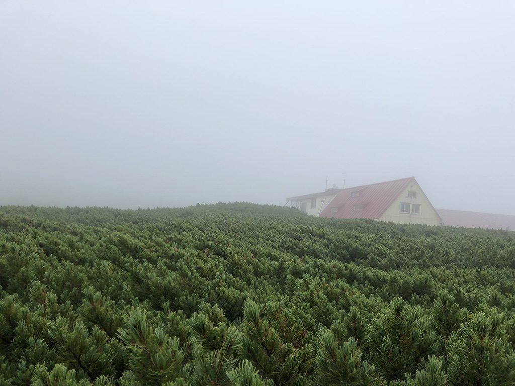 雲ノ平・三俣山荘が見えてきた