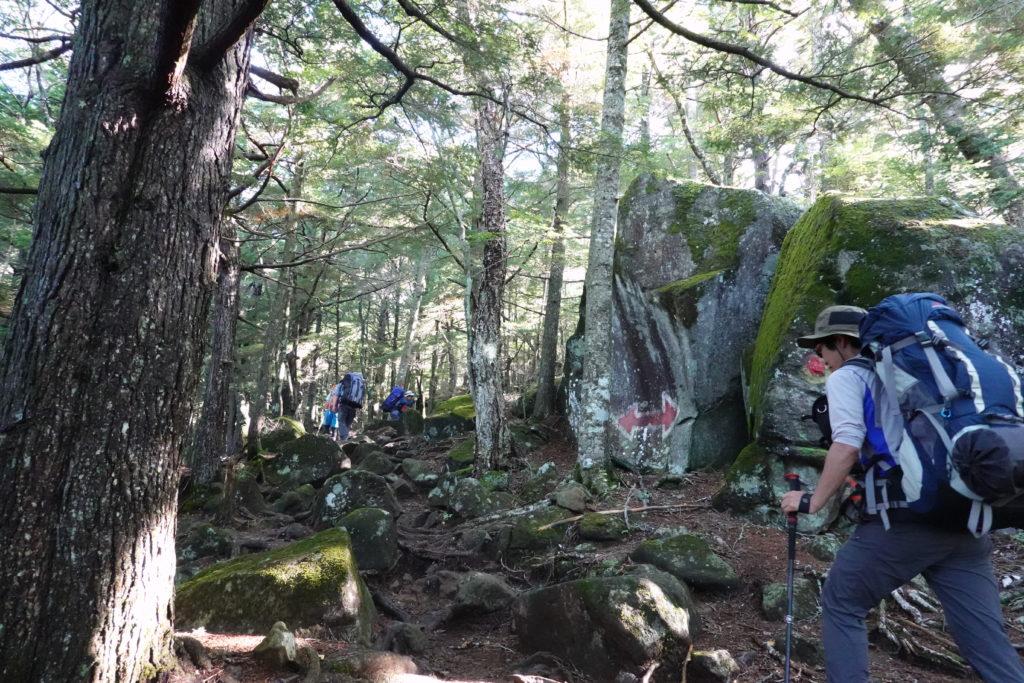 編笠山・権現岳・樹林帯の巨石1