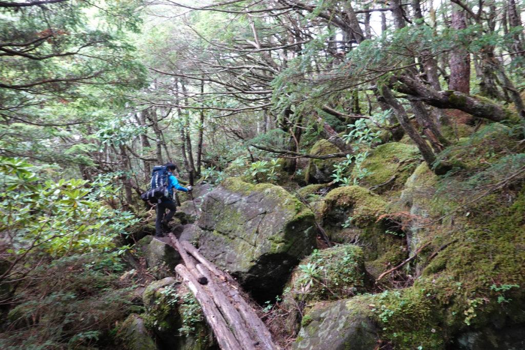 編笠山・権現岳・青年小屋からの巻き道3・木の橋