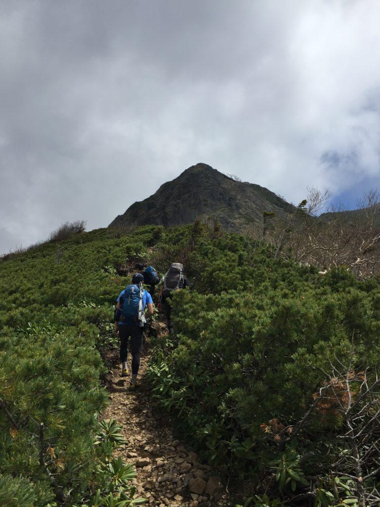 編笠山・権現岳・過去pic・権現岳に至る道・ほんとはこういう道なのです