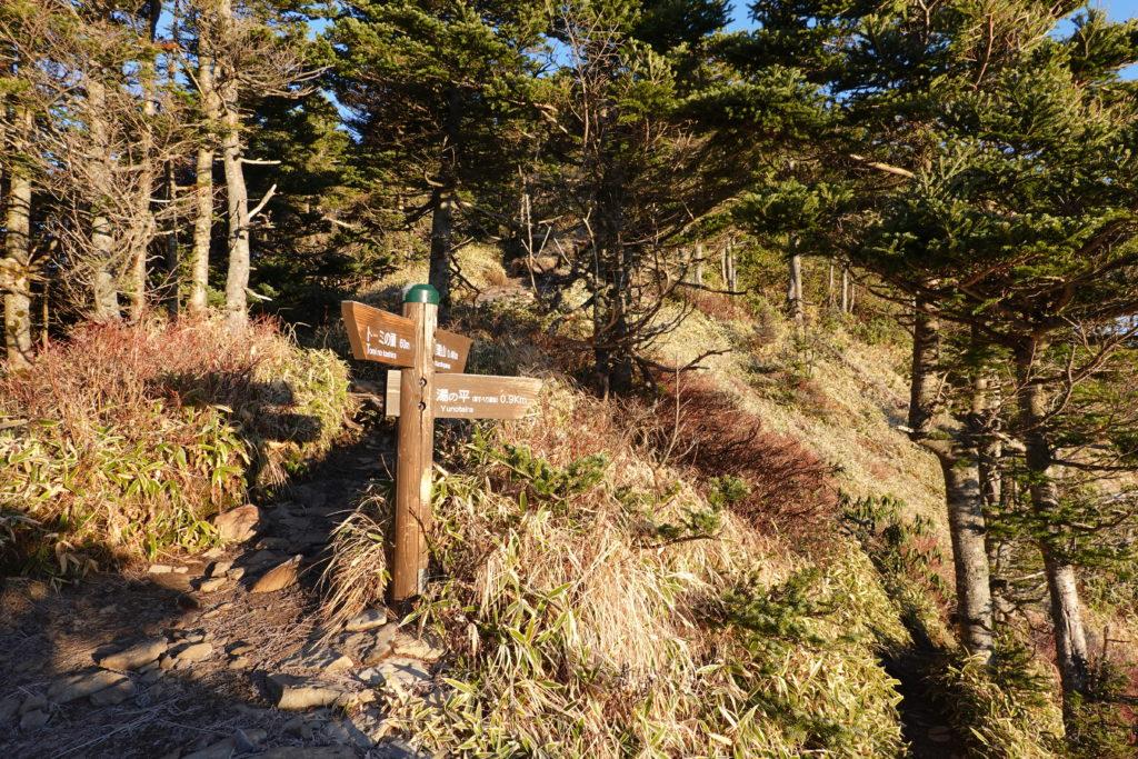 浅間山(前掛山)・黒斑山、湯ノ平口の分岐