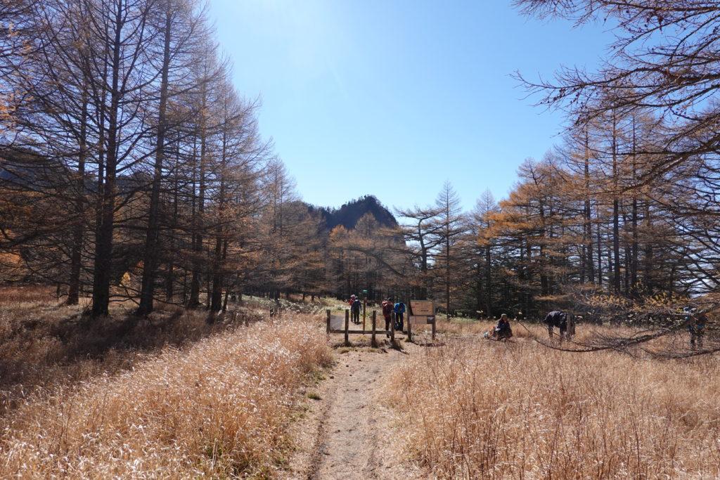 浅間山(前掛山)・湯ノ平口
