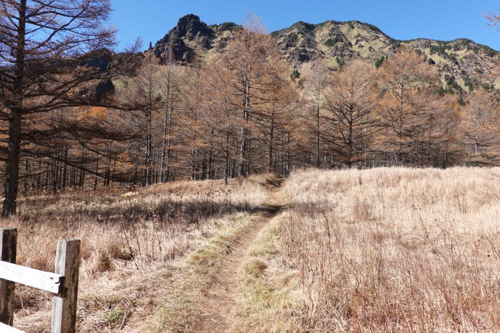 浅間山(前掛山)・湯ノ平口からトーミの頭へ