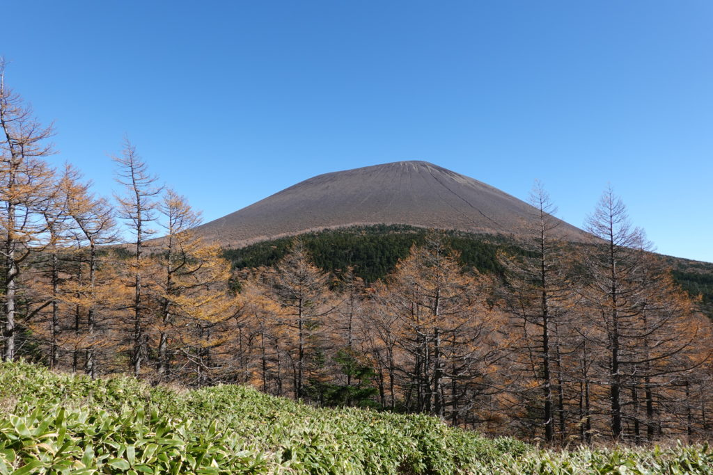 浅間山(前掛山)・草すべりからの浅間山(前掛山)