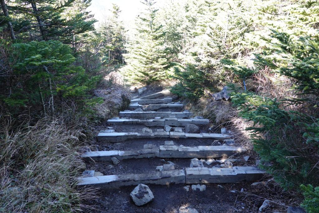 浅間山(前掛山)・黒斑コース・表コースは木の階段が