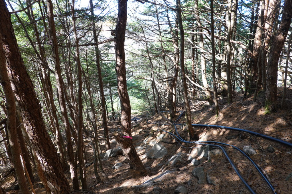 浅間山(前掛山)・黒斑コース・表コースの黒いケーブル