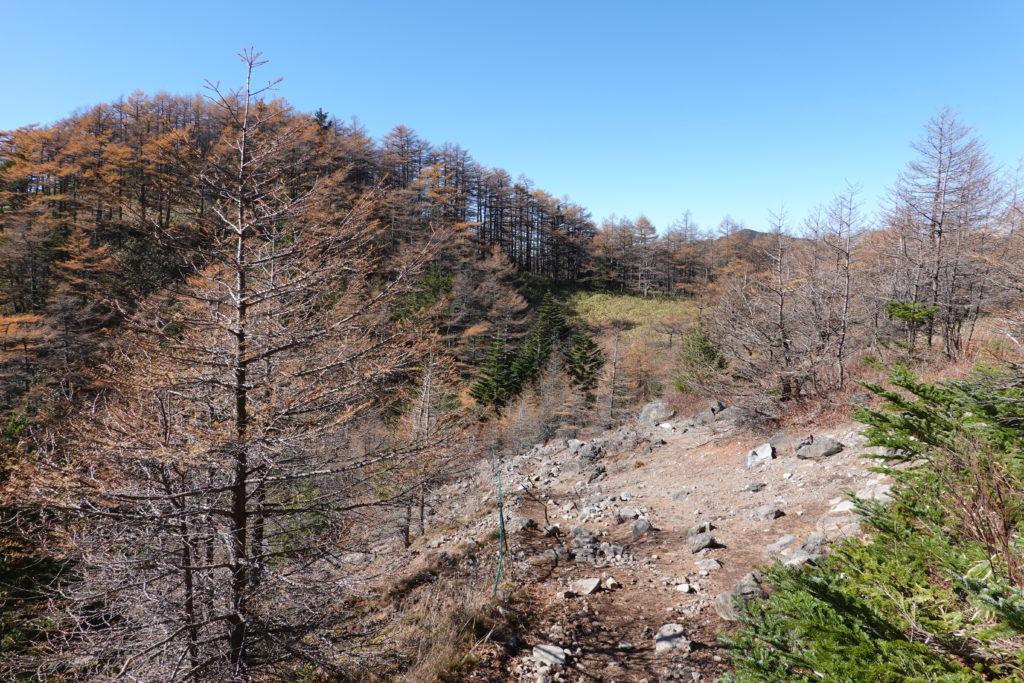 浅間山(前掛山)・黒斑コース・表コースの小高い丘