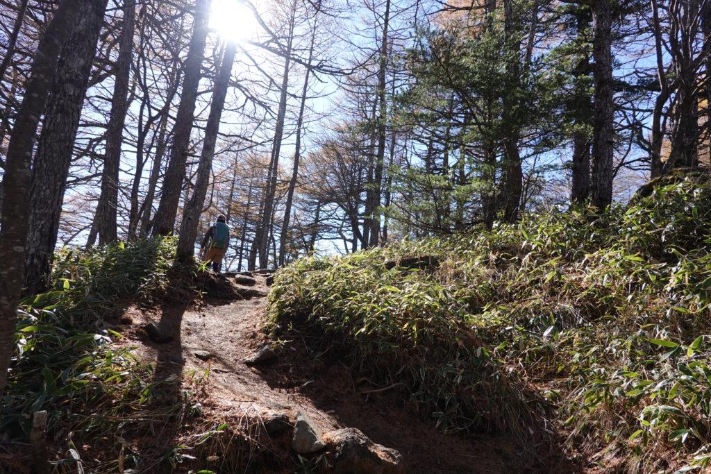 浅間山(前掛山)・黒斑コース・表コースの小高い丘、登ります