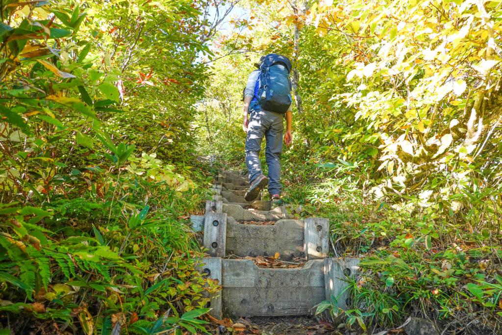 越後駒ヶ岳(魚沼駒ヶ岳)・明神峠先の木道の登り坂