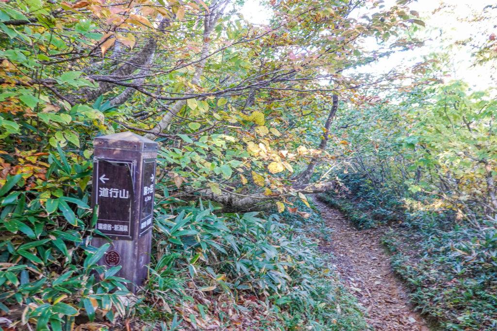 越後駒ヶ岳(魚沼駒ヶ岳)・道行山山頂と小倉山への分岐