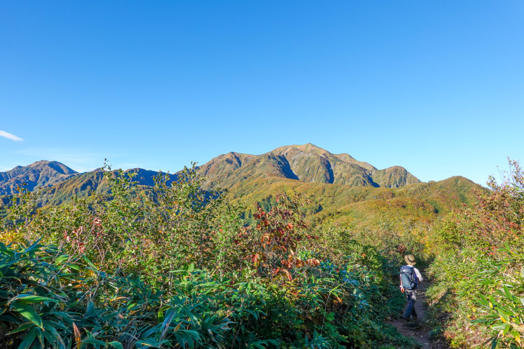 越後駒ヶ岳(魚沼駒ヶ岳)・道行山近辺からの中ノ岳と越後駒ヶ岳