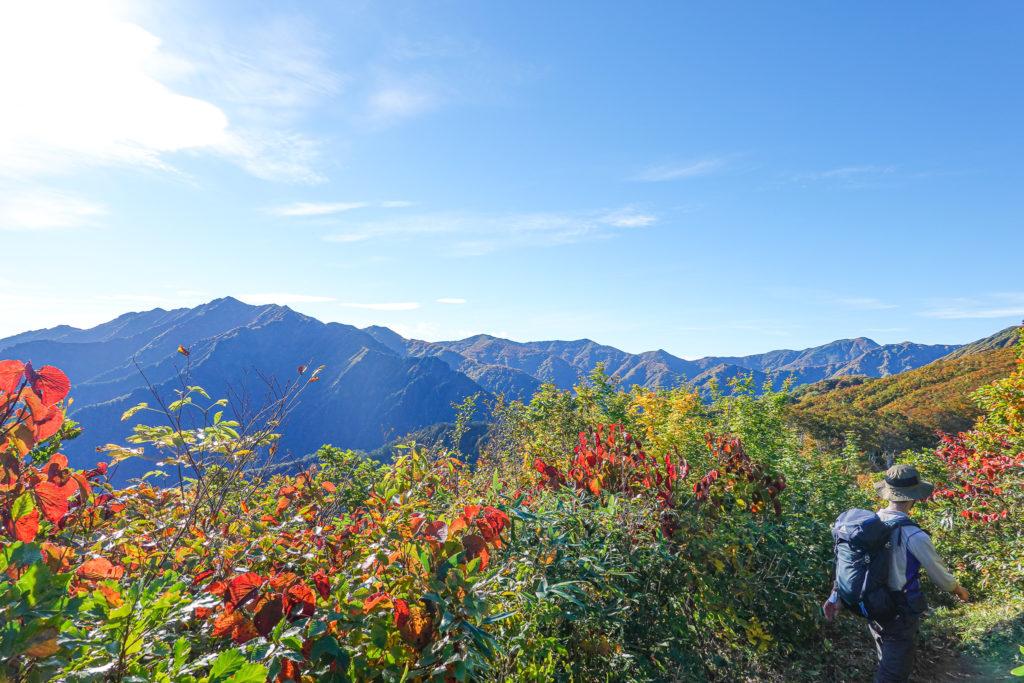 越後駒ヶ岳(魚沼駒ヶ岳)・小倉山の紅葉/黄葉