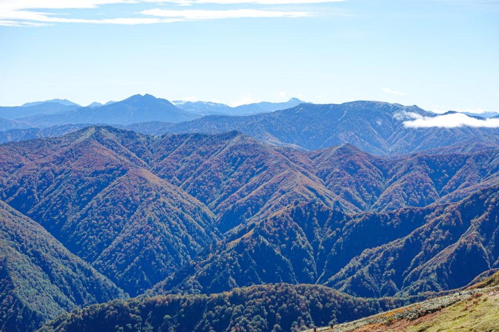 越後駒ヶ岳(魚沼駒ヶ岳)・越後駒ヶ岳からの尾瀬・平ヶ岳方面