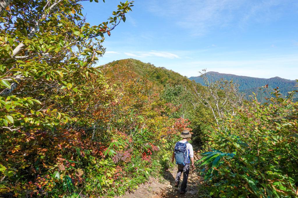 越後駒ヶ岳(魚沼駒ヶ岳)・道行山から明神峠