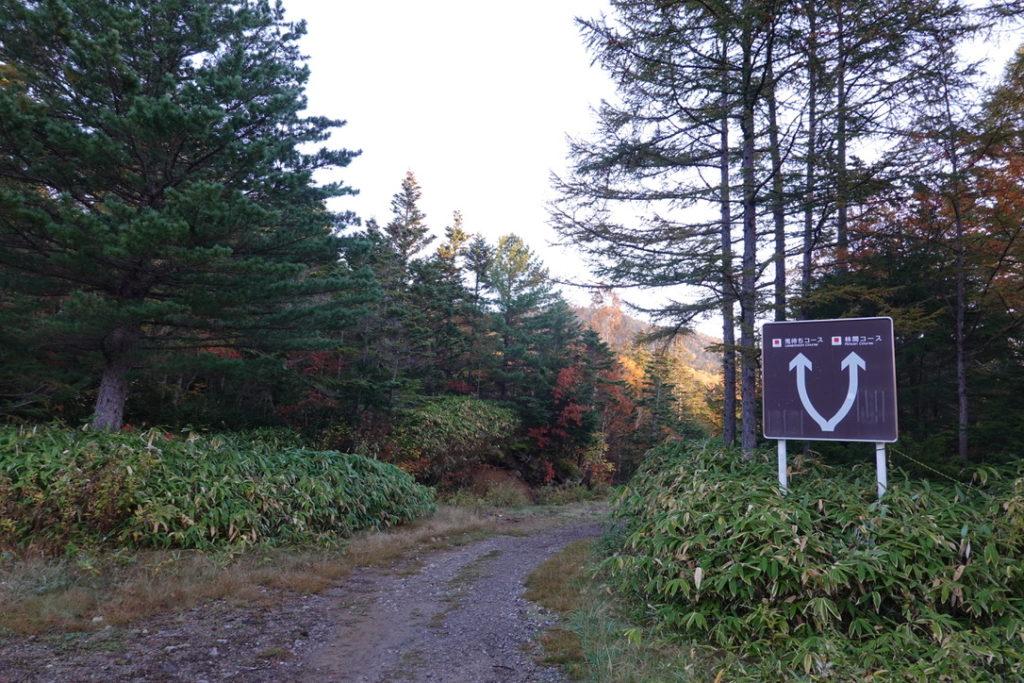 乗鞍岳・三本滝・兎待ちコース、林間コースの分岐