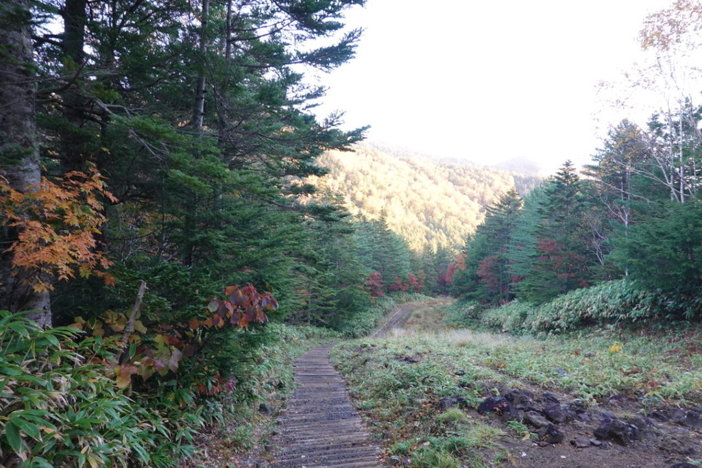 乗鞍岳・三本滝レストハウスから三本滝の道は下り