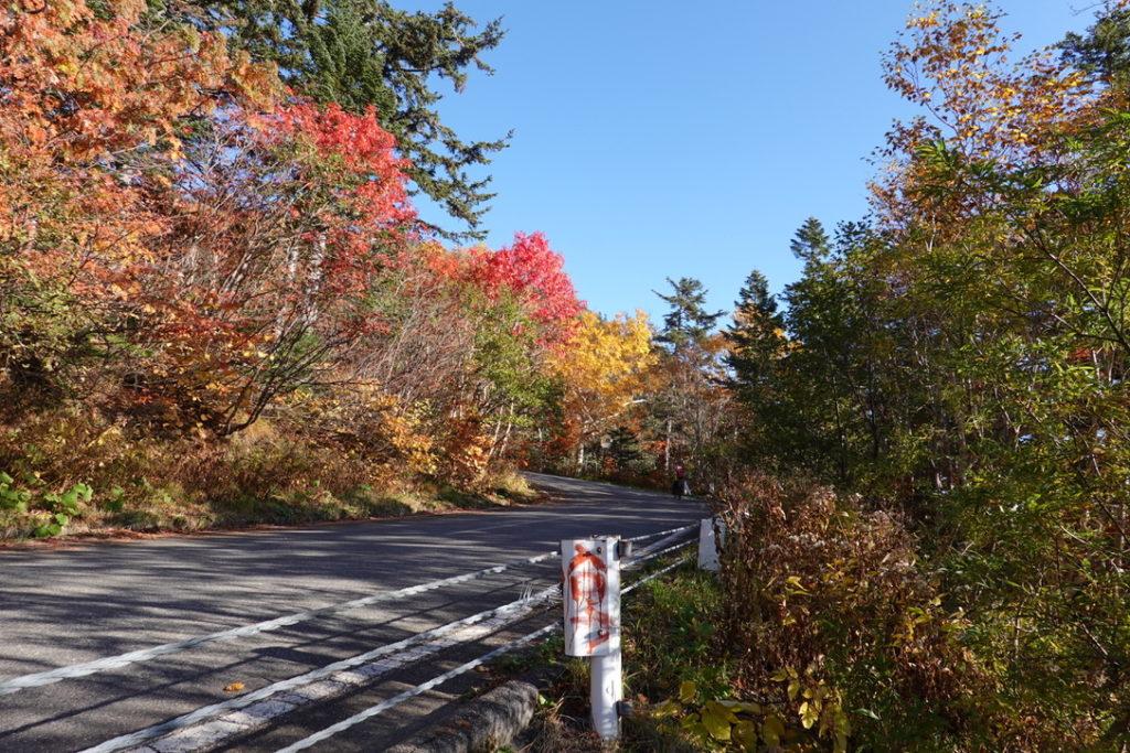 乗鞍岳・荒田沢橋から冷泉小屋へ・車道にまたまたつきました