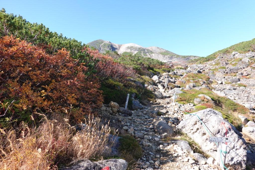 乗鞍岳・乗鞍エコーライン・肩の小屋口至る道・岩がゴロゴロ登山道