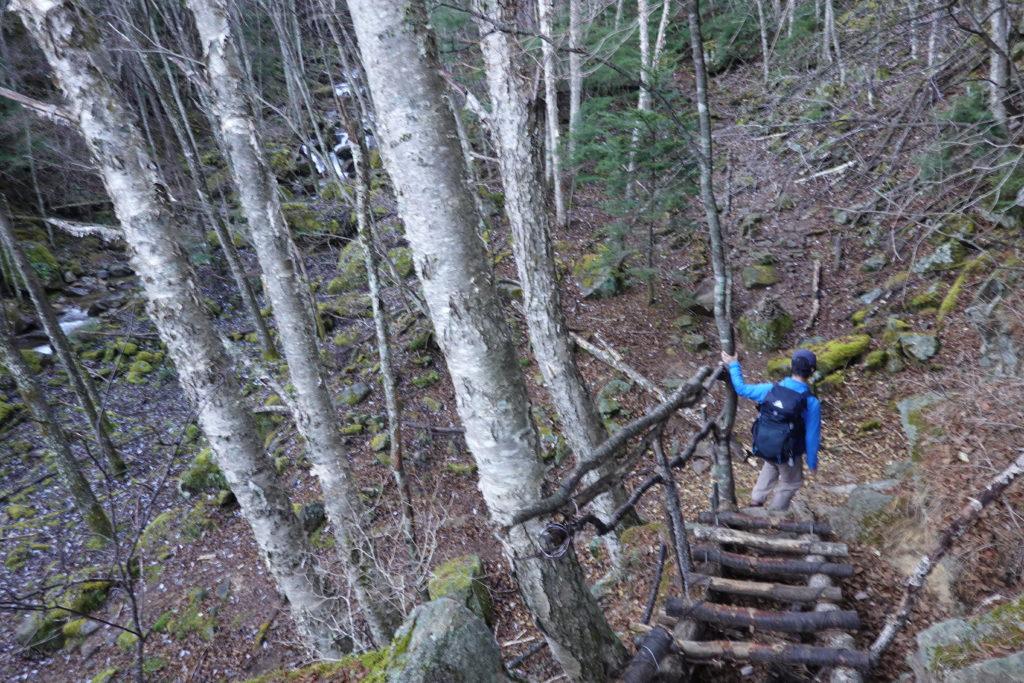 甲武信ヶ岳・千曲川源流遊歩道・木の階段を越えて