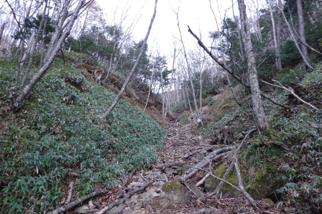 皇海山・皇海山不動沢コース・傾斜がキツくなってきた