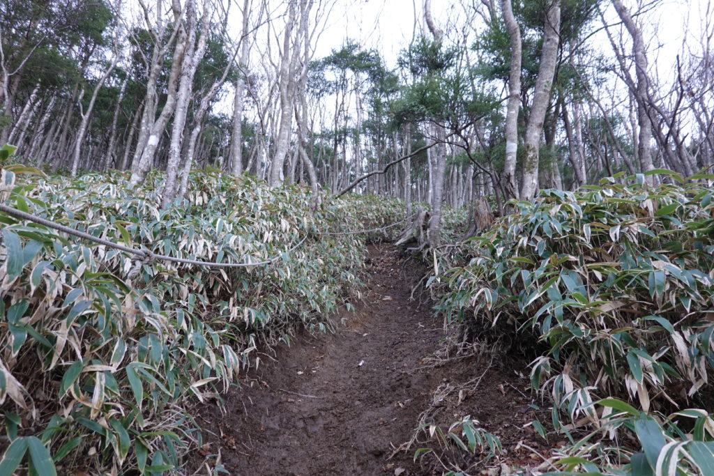 皇海山・皇海山不動沢コース・急坂をロープ頼りに登ります