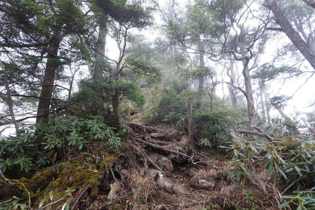 皇海山・鋸山登頂中