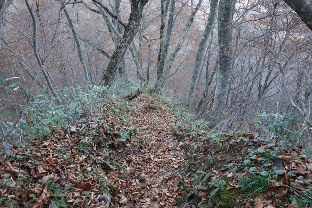 高妻山・戸隠山・枯れ葉で滑りやすい急坂
