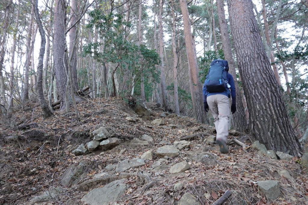 蛭ヶ岳・八丁坂・小屋戸沢沿いの急登登ります