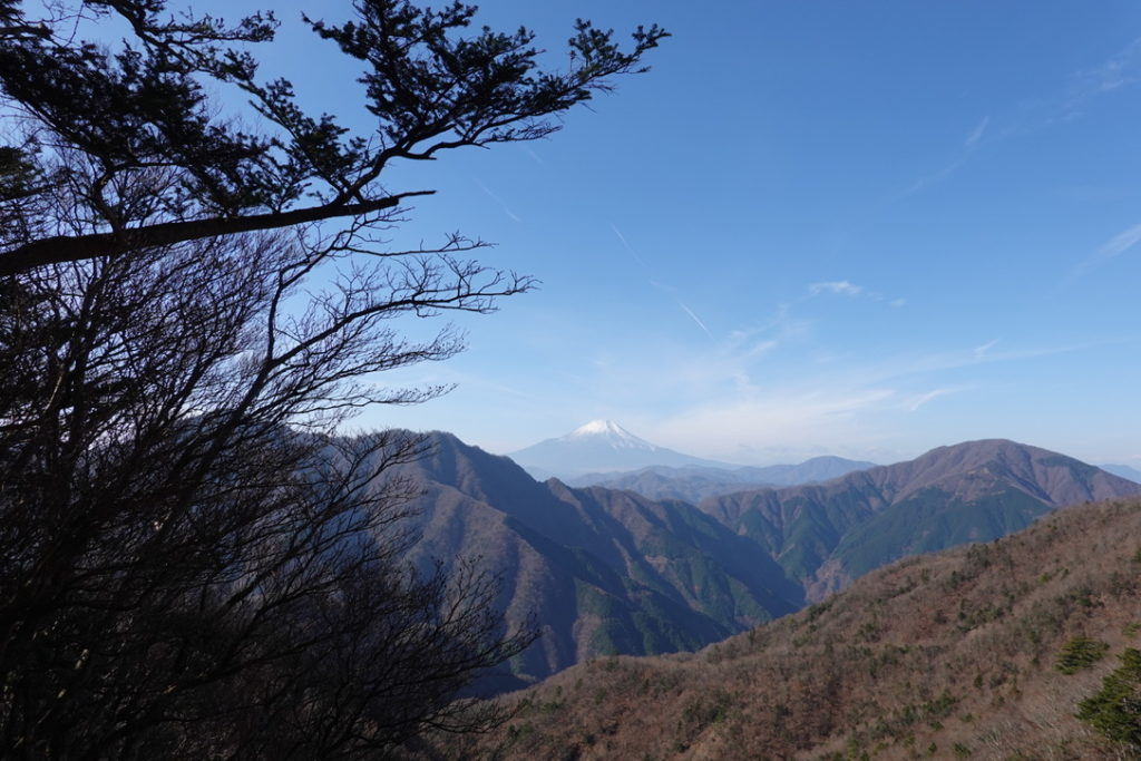 蛭ヶ岳・姫次からの富士山