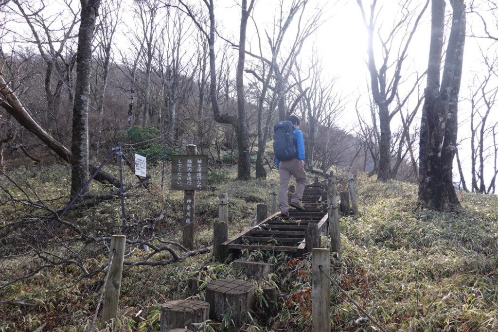 蛭ヶ岳・蛭ヶ岳へと続く木道・ここからがキツイ