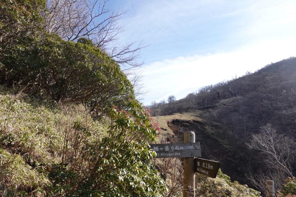 蛭ヶ岳・蛭ヶ岳へと続く木道・あちらの尾根を歩くのね
