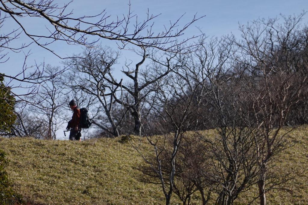 蛭ヶ岳・蛭ヶ岳へと続く木道・あちらの尾根を歩くのね・アップ