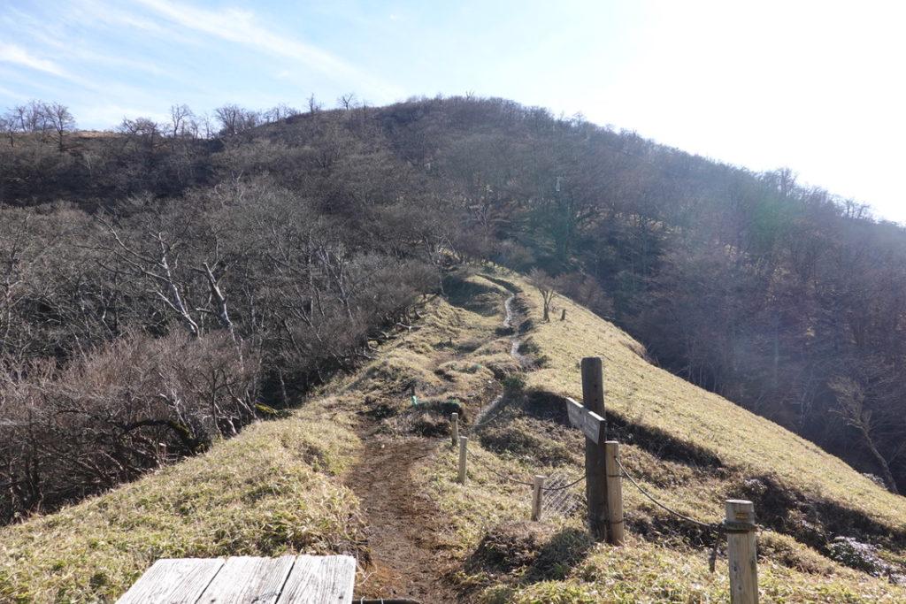 蛭ヶ岳・蛭ヶ岳へと続く木道・ここで一息休憩です