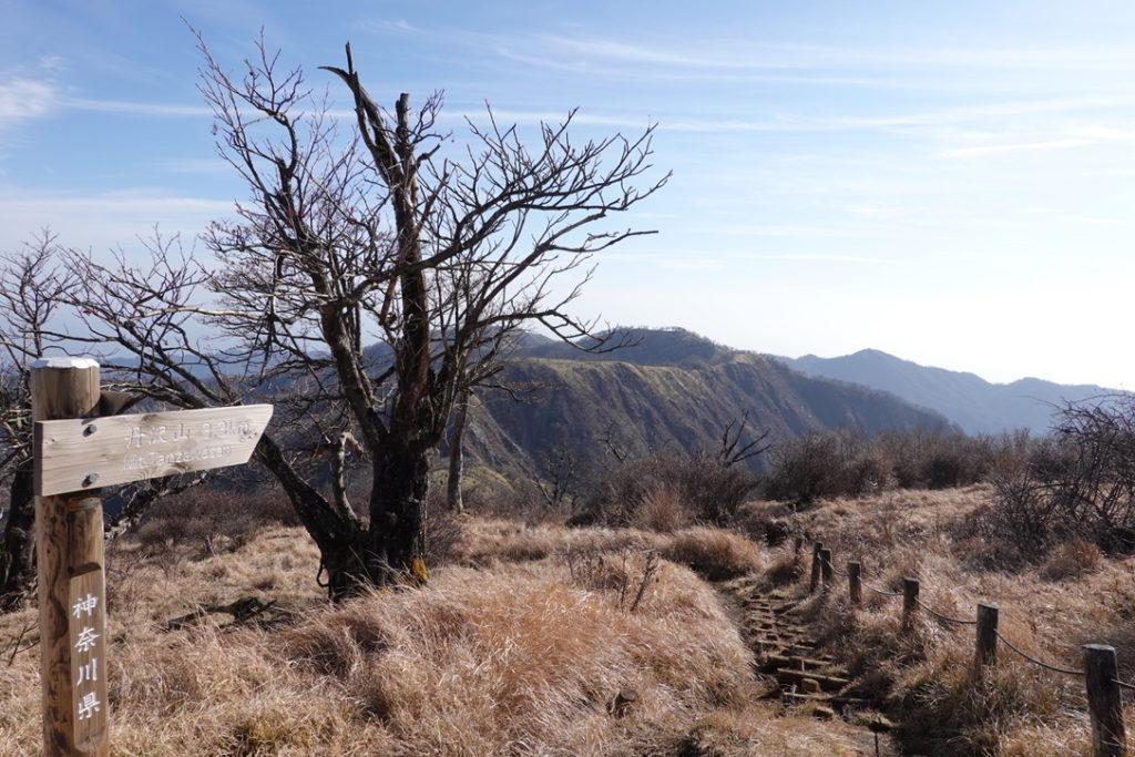 蛭ヶ岳・蛭ヶ岳から丹沢山へと続く道