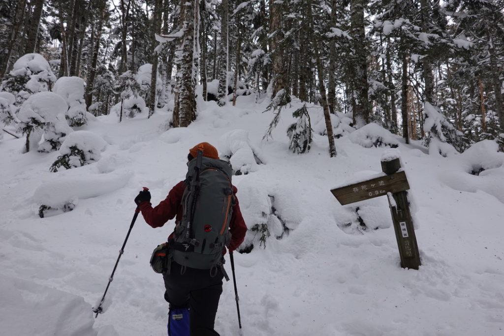積雪期・日光白根山・深い樹林帯・弥蛇ヶ池まで0.3km