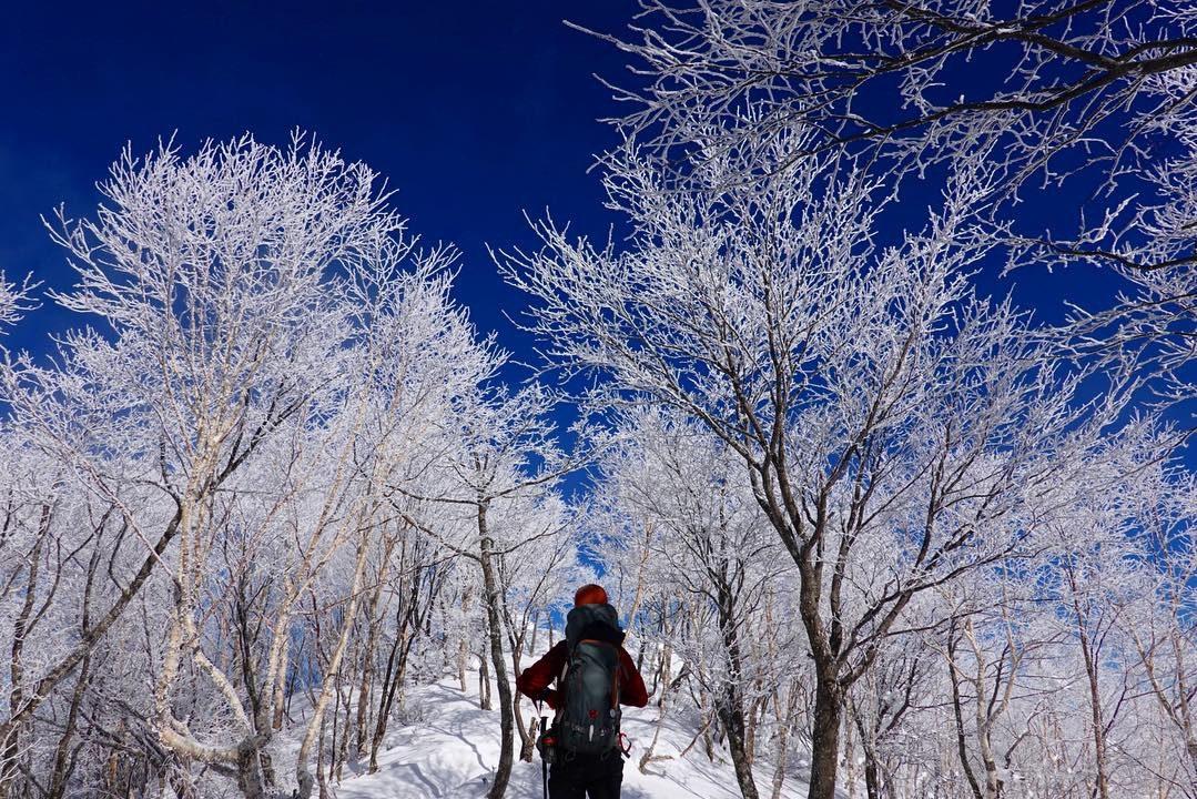 霧氷(樹氷)の赤城山(黒檜山・駒ヶ岳)