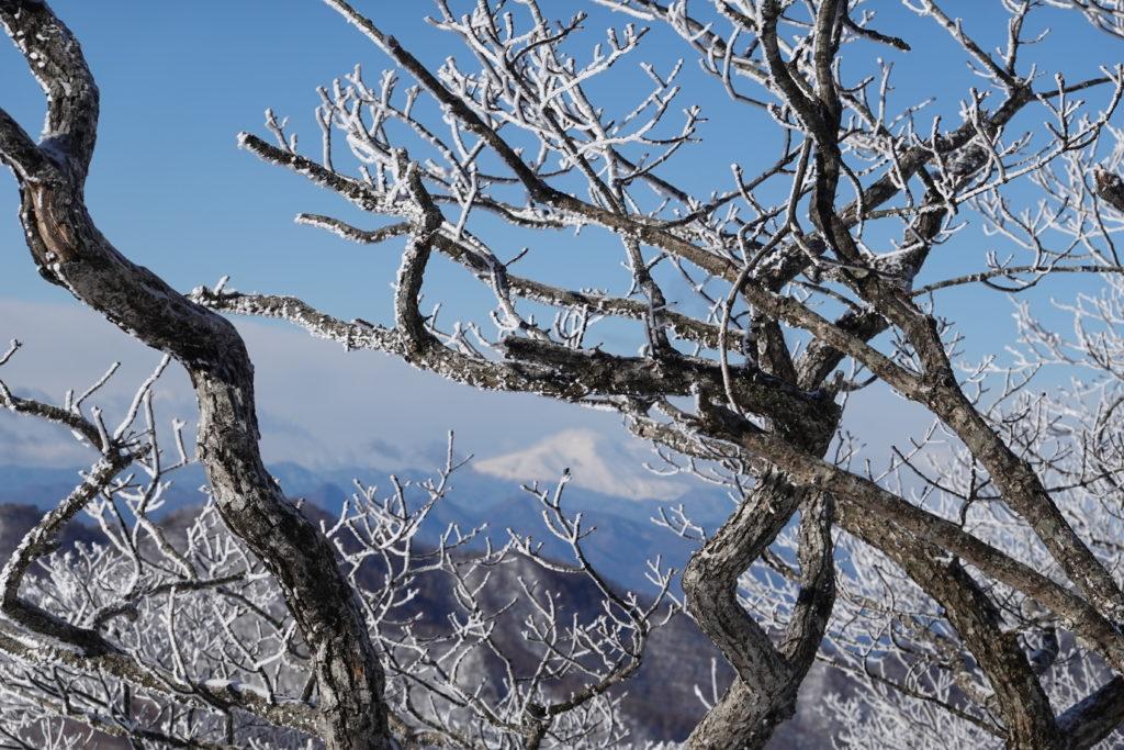 厳冬期・赤城山(黒檜山・駒ヶ岳)・アンテナ山の左どなりに富士山・アップ