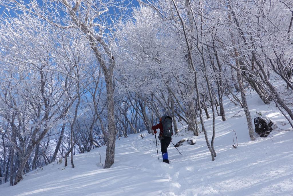 厳冬期・赤城山(黒檜山・駒ヶ岳)・霧氷(樹氷)の中を進む2