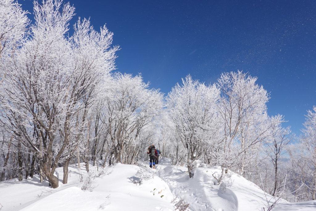 厳冬期・赤城山(黒檜山・駒ヶ岳)・霧氷(樹氷)の中を進む4
