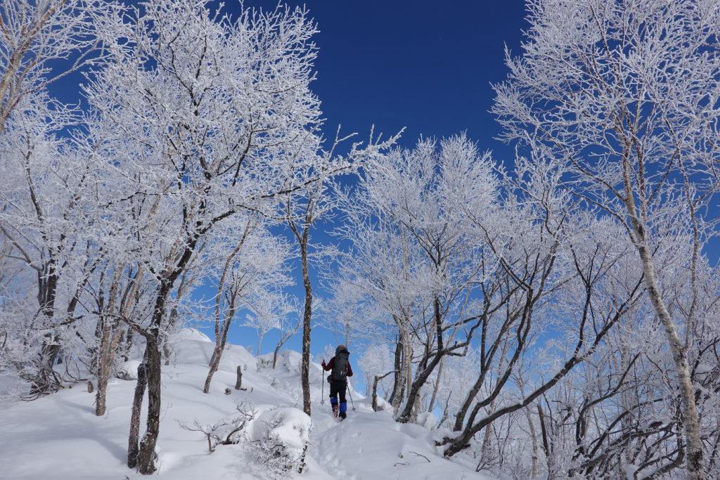 厳冬期・赤城山(黒檜山・駒ヶ岳)・霧氷(樹氷)の中、黒檜山山頂へ