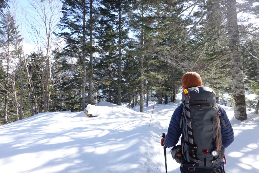厳冬期・西穂高岳・西穂独標・西穂山荘へ・快晴の樹林帯を行く
