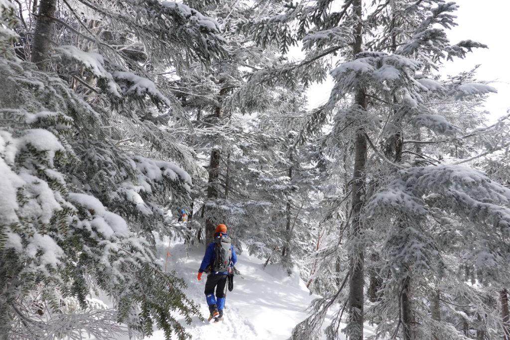 厳冬期・西穂丸山・西穂山荘へ・樹林帯を行く