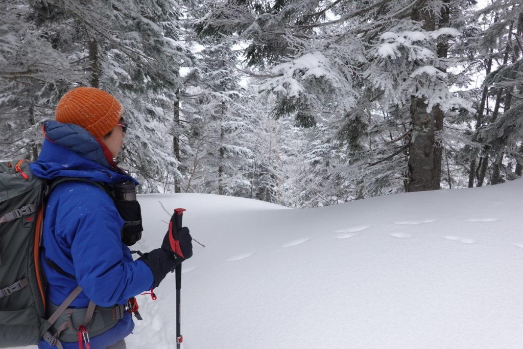 厳冬期・西穂丸山・西穂山荘から新穂高ロープウェイへ