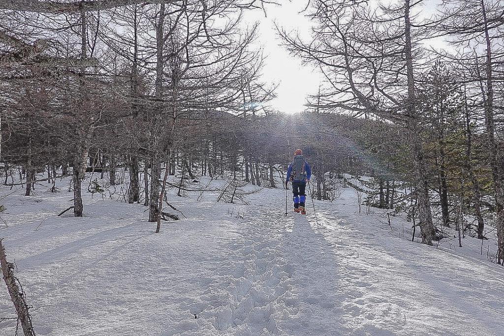 残雪期・浅間山・車峠坂から黒斑山へ