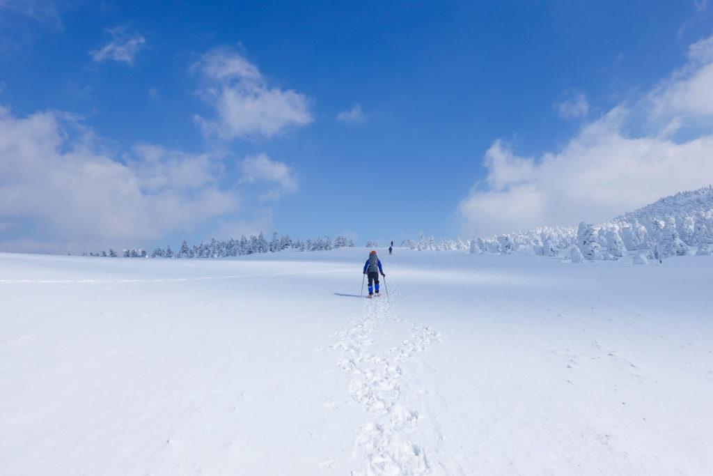 残雪期・西吾妻山・山頂近くの雪田草原