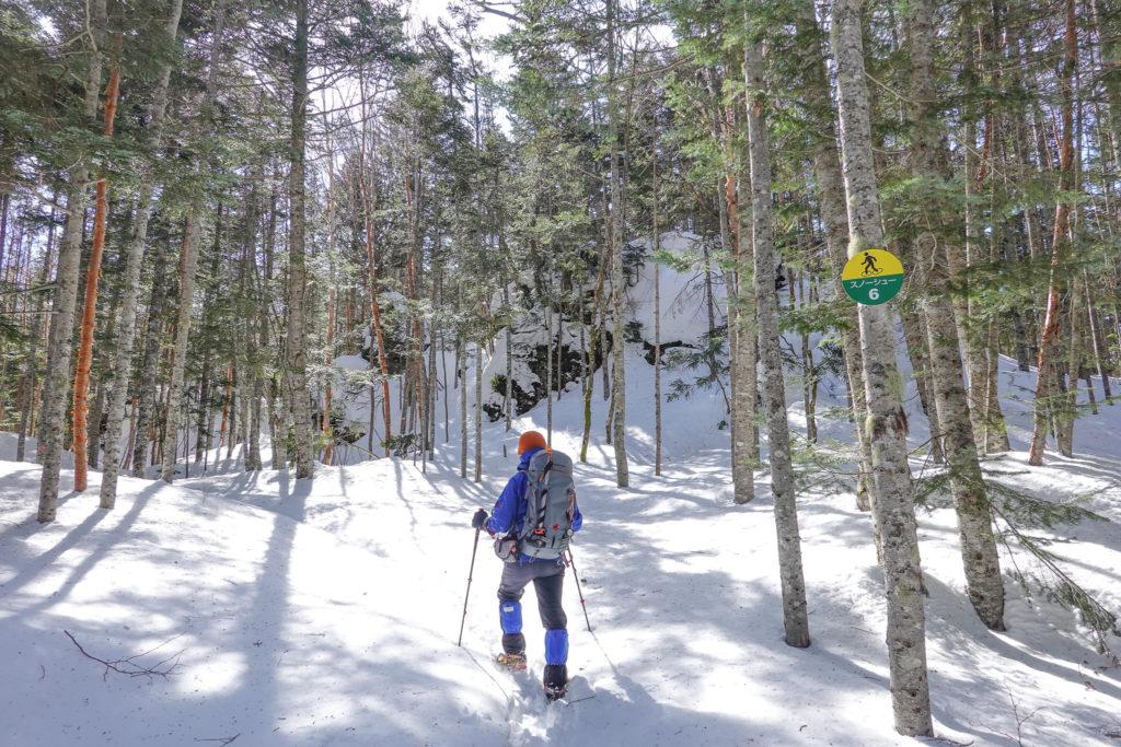 残雪期・日光白根山・深い樹林帯