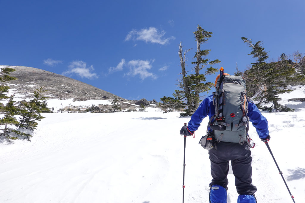残雪期・日光白根山・樹林帯を抜けた!