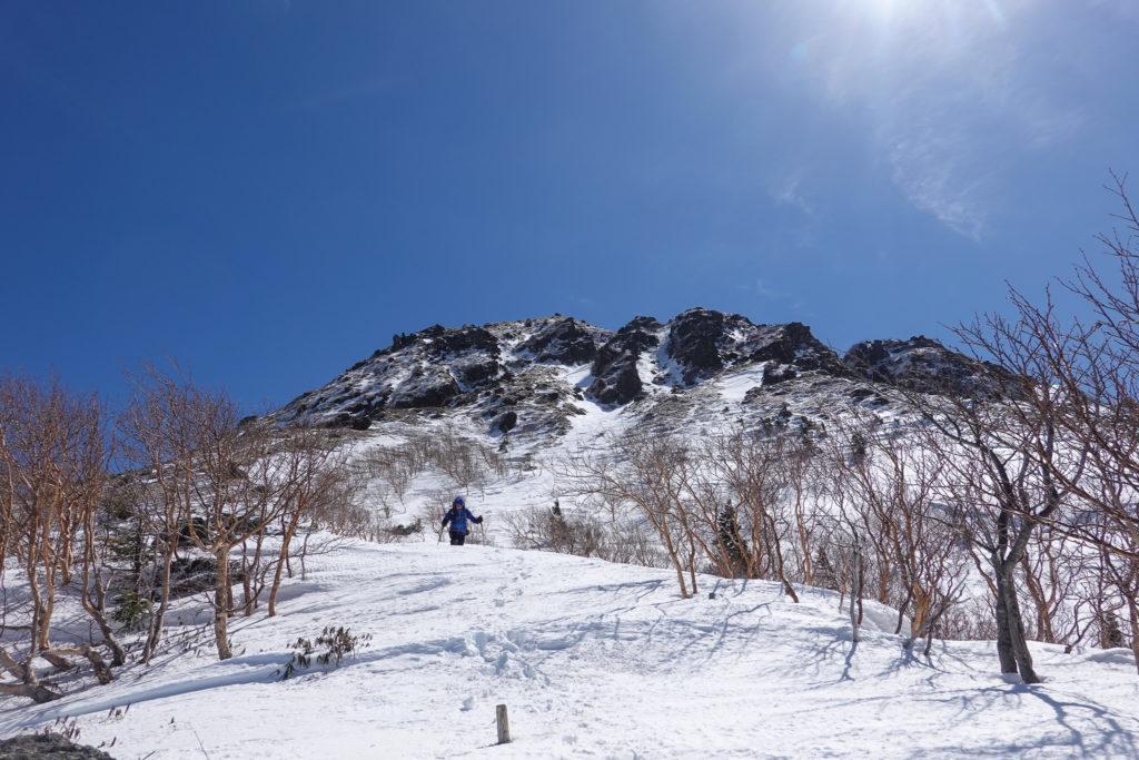 残雪期・日光白根山・だんだん木々が増えてきた